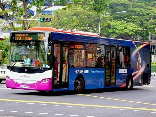 Bus 123 Sentosa