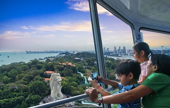 Sky Tower Family