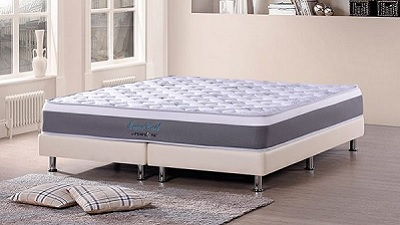 Univonna Euro Coil Spinal Care Mattress