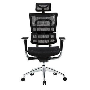 Ergomeister FAEZ8ERG Ergonomic Office Chair